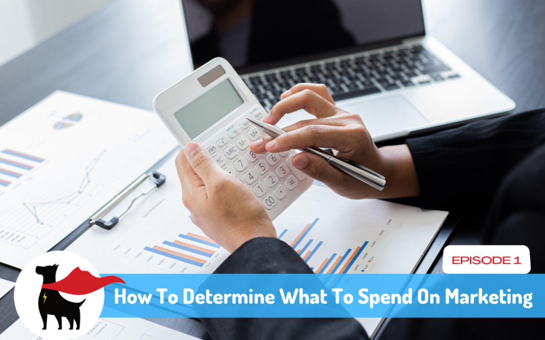Episode1: How To Determine What To Spend On Marketing