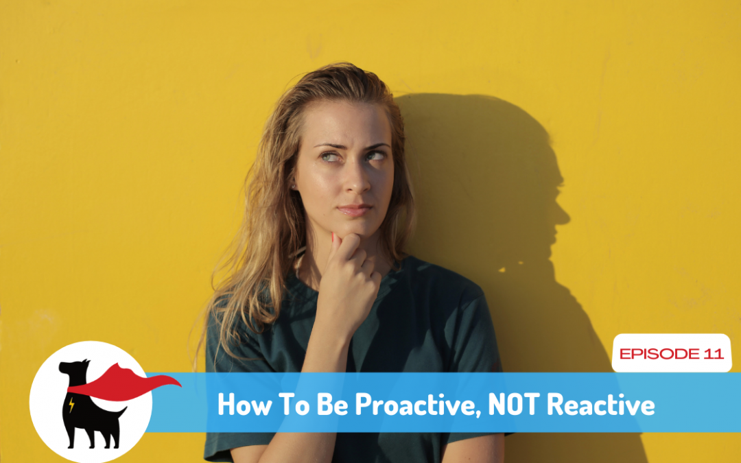 Episode 11: How To Be Proactive and NOT Reactive